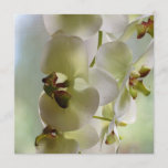 Dangling Orchid  Invitations