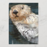 Sea Otter Invitation