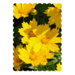 Yellow Coreopsis Invitation